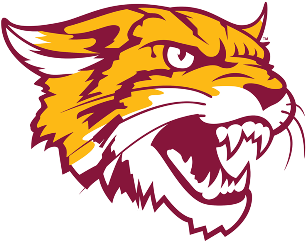 Bethune Cookman Wildcats Alternate Logo 2016 Wild Cats Wildcats Logo Cat Logo