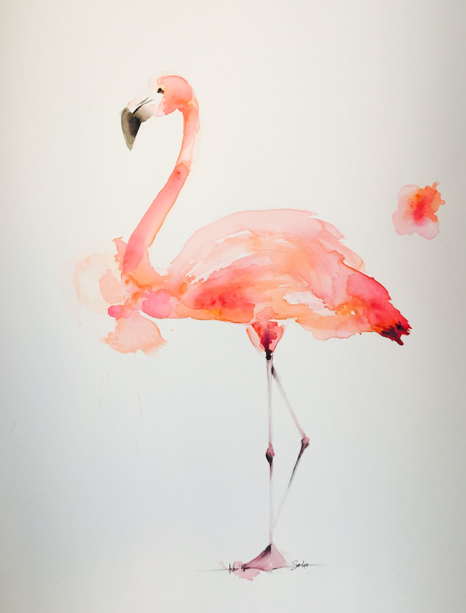 Flamant Rose Aquarelle Pink Flamingo Watercolor Pinkflamingo