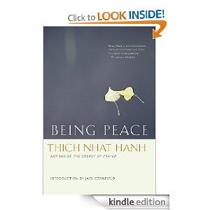 A simply-stated, but engaging intro to some basic Buddhist principles which anyone can use to bring more peace to their life, without violating their chosen religion.