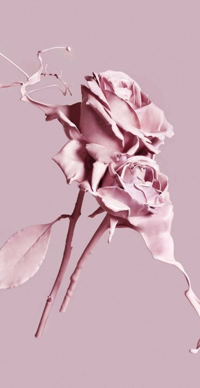 Aesthetic roses paint🎨🌹 shared by ♛Samey on We Heart It