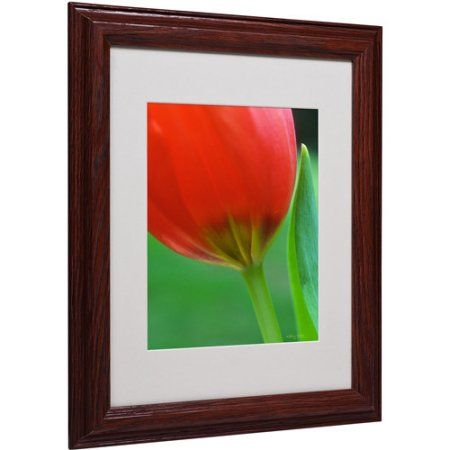 Trademark Fine Art Pure Matted Framed Canvas Art by Kathy Yates, Size: 11 x 14, Multicolor