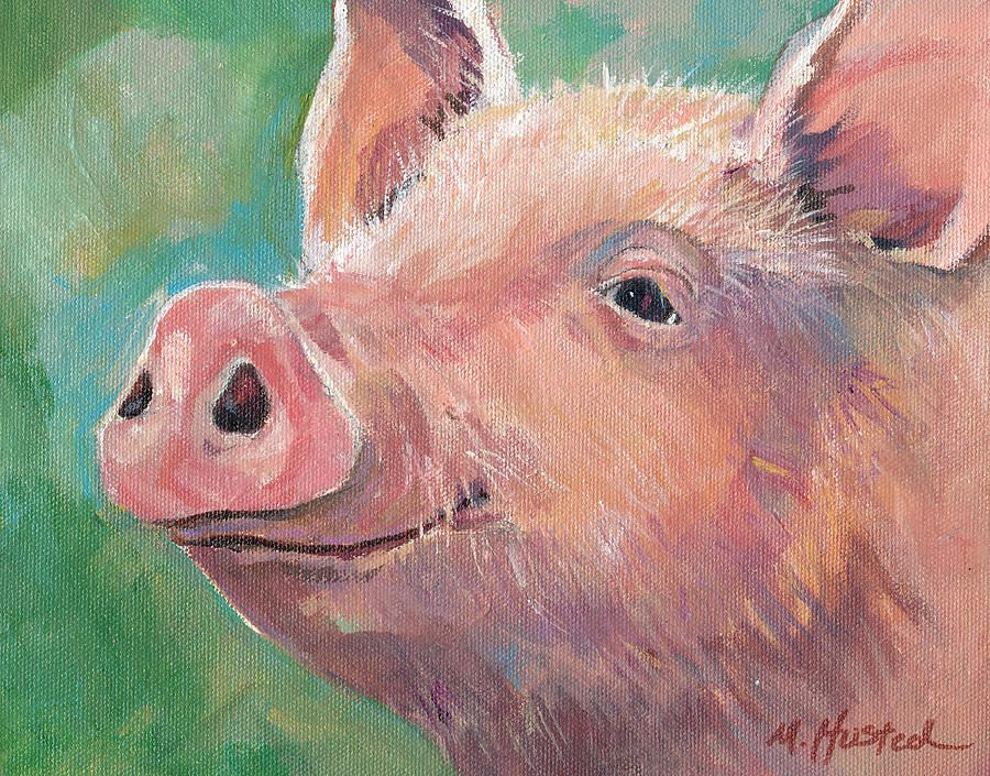 pig canvas print canvas art by marty husted paintings