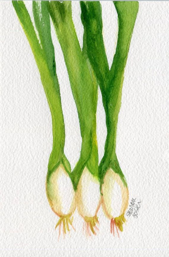 Original Green Onions Watercolor Painting Kitchen 4 X 6 Farmhouse