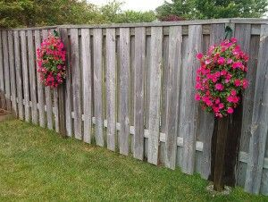 Hanging flower pots for fences garden pinterest - Flower pots to hang on fence ...