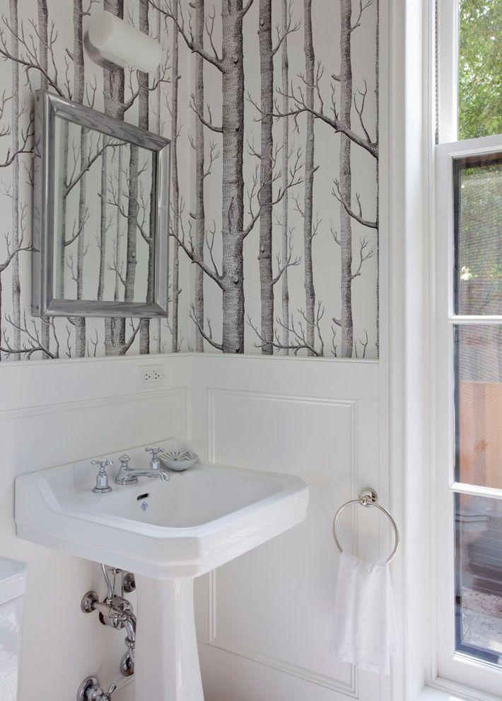 Breathtaking Birch Trees Decorating Ideas For Decorative Powder Room Transitional Design Ideas Wit Powder Room Wallpaper Birch Tree Wallpaper Birches Wallpaper