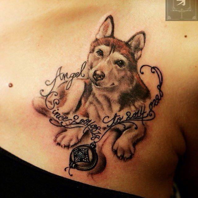 Tattoo Tattoodog Dogportrait Portraittattoo Ink Assassintattoo Taipei Dogtattoo Husky Huskytattoo Dog Tattoo Rainbow Bridge Dog Husky Tattoo