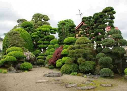 Déco jardin zen en 100 idées inspirantes