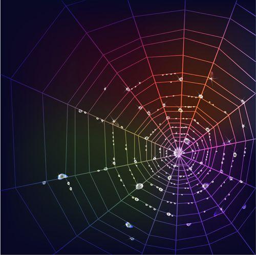 Set of Spider web vector background 04