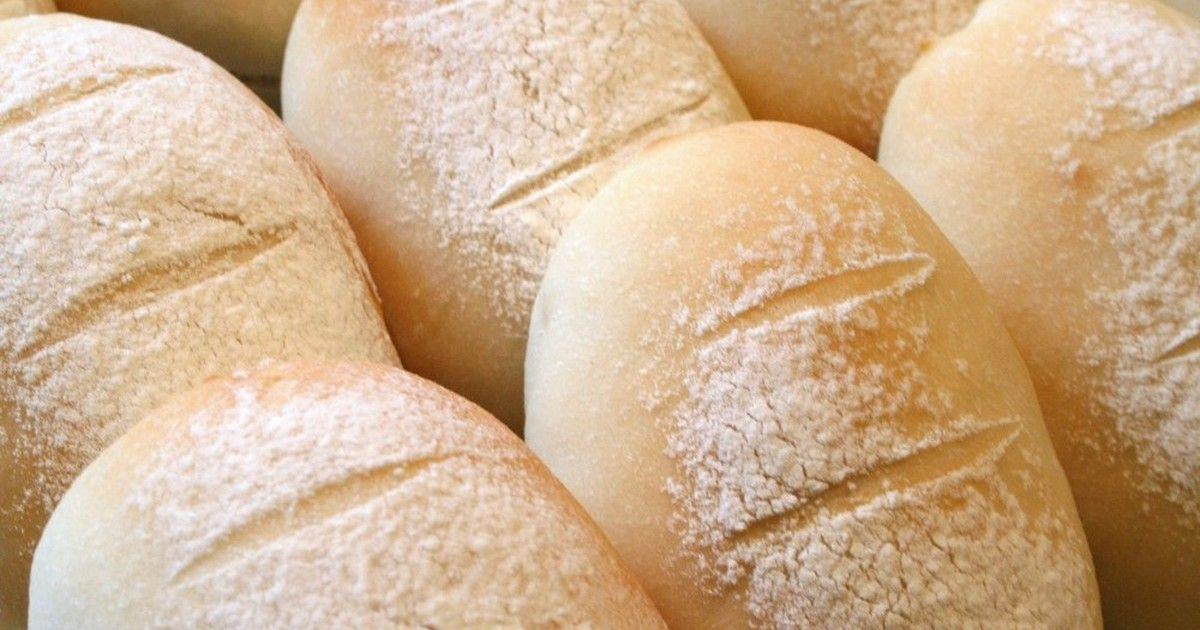 なし パン 発酵