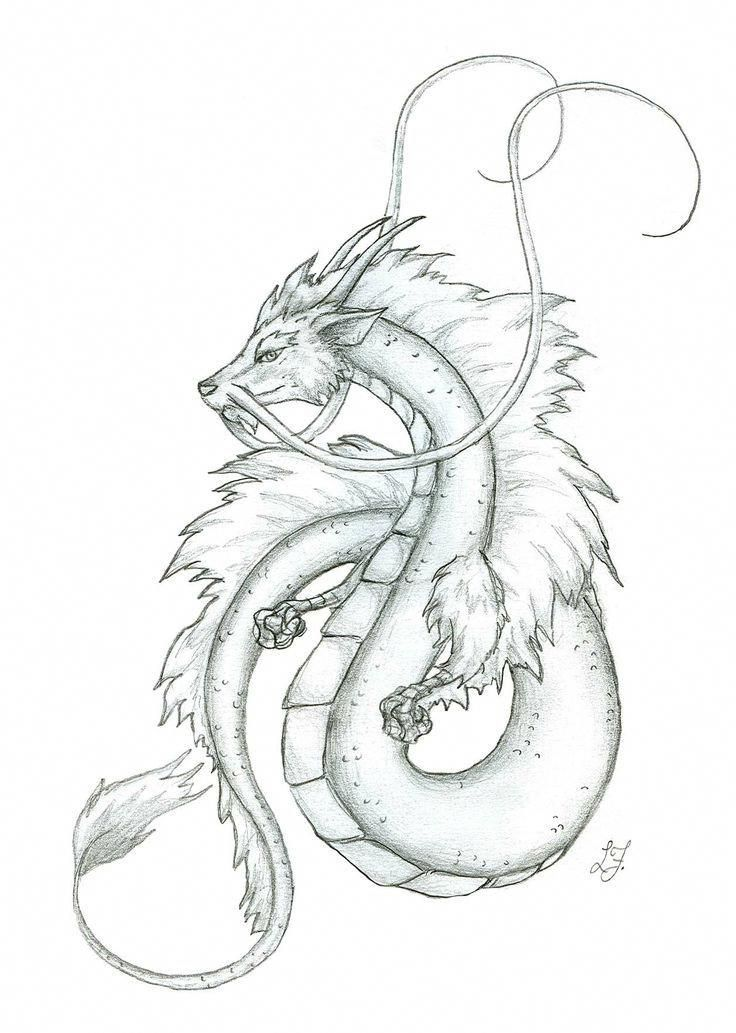 Image Result For Peaceful Japanese Dragon Drawing Smalldragontattoos Dragon Sketch Japanese Dragon Drawing Dragon Drawings In Pencil