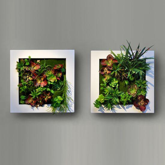 Cuadros verdes para pared decoracion de casa - Cuadro jardin vertical ...