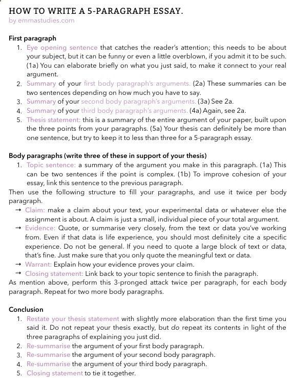 005 Emmas Studyblr essay writing tips paragraph school student