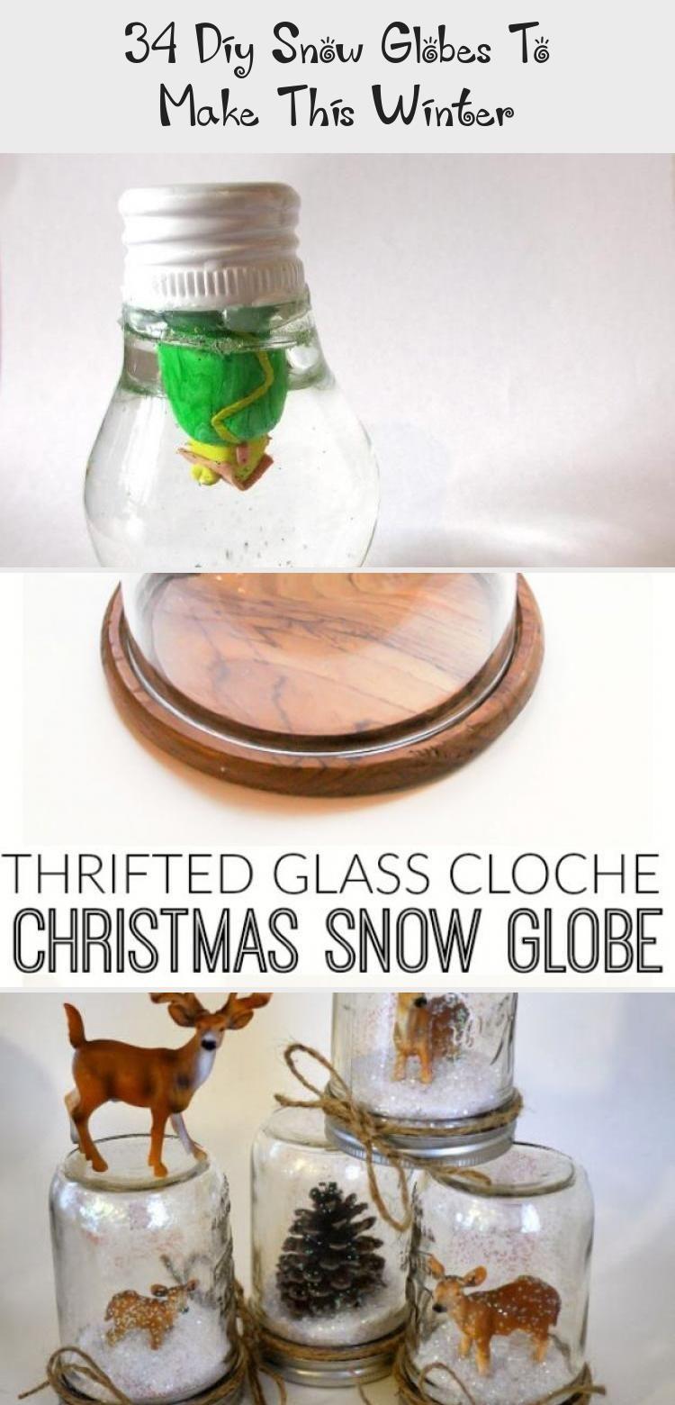 DIY Snow Globe Ideas Succulent Snow Gl... diy Globe