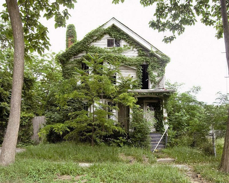 Feral House #13, by James Griffioen - 20x200 (from $60)