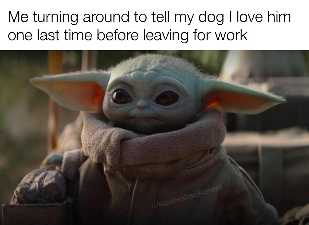 I Love Baby Yota Star Wars Memes Yoda Meme Star Wars Humor