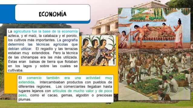 Image Result For Aztec Cultivo Aztec Social Studies