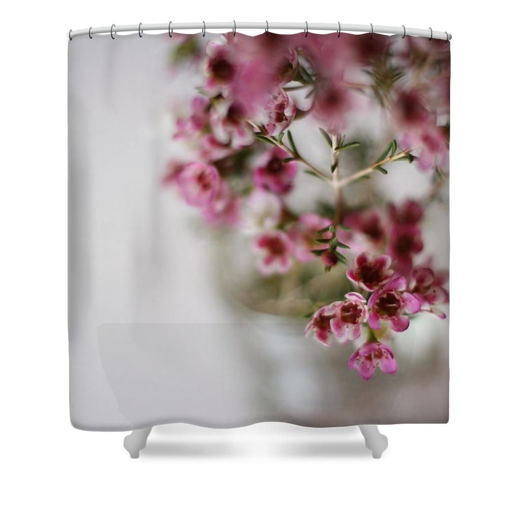 "Pink Flowers Shower Curtain for sale by Inspired Arts.  This shower curtain is made from 100% polyester fabric and includes 12 holes at the top of the curtain for simple hanging.  The total dimensions of the shower curtain are 71"" wide x 74"" tall."