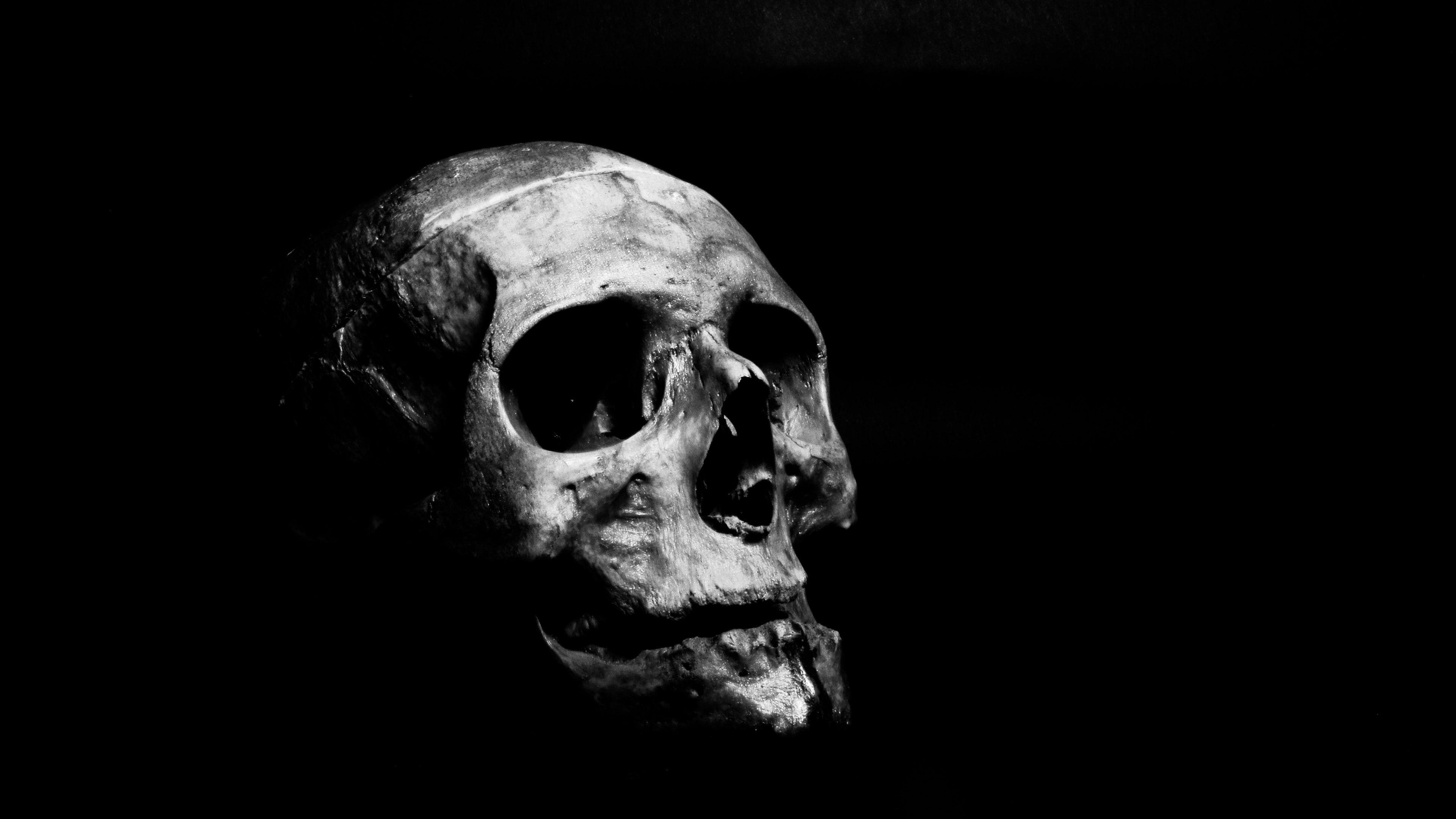 Skull By Ahmed Adly 3840x2160 4k In 2020 Dark Wallpaper Ios Wallpapers Black Wallpaper