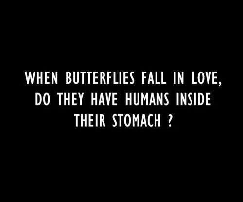 Butterflies In Love Butterfly Funny Love Stomach Quotes