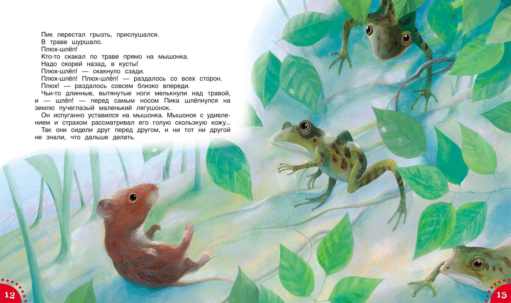 В бианки мышонок пик pdf Fish pet, Pets, Animals