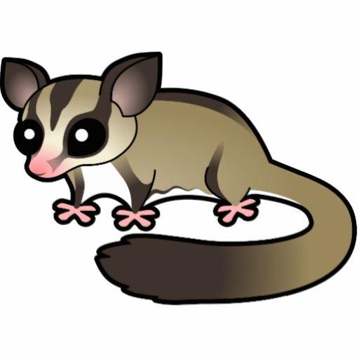 32e357200 Sugar glider possum art general sugar glider diet gliders jpg 512x512 Baby  possum cartoon