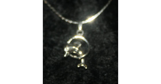 """SILVER PLATED HEART PENDANT and 16"""" CHAIN. FREE MATCHING EARRINGS! NO FEES! $4.99"""