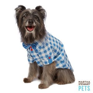 Gingham. Your pet's spring pattern of choice. Martha