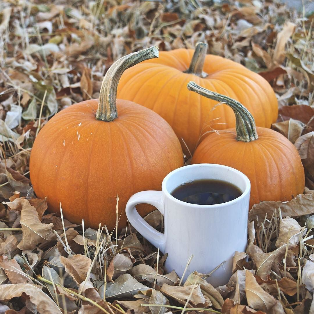 It's that time of year. #PumpkinSpiceChai
