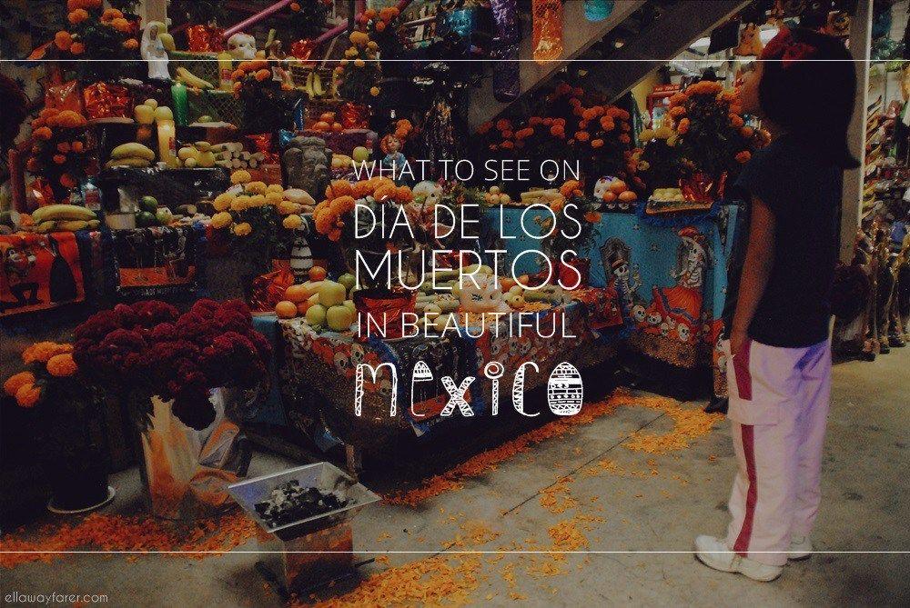 MÉXICO | Día de los Muertos Halloween