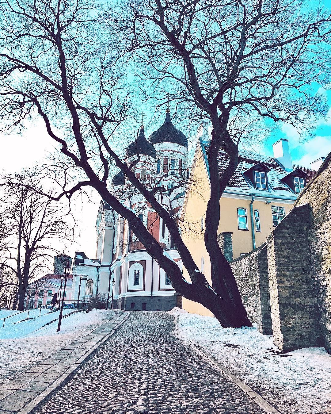 Cathedrale Alexander Nevski 1895 1900 Tallinn Estonie Estonie Tallinn Cathedrale