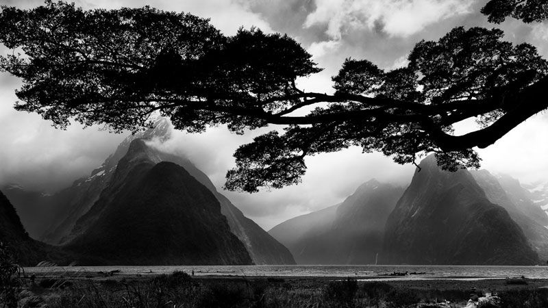 Milford sound new zealand mike hollman photography