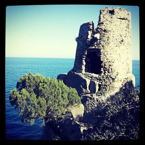Foto Instagram Sardegna: Mare e Torri costiere della Sardegna #igersardegna #sardegna #instagram