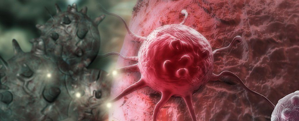 A newly discovered mechanism causes cancerous cells to kill