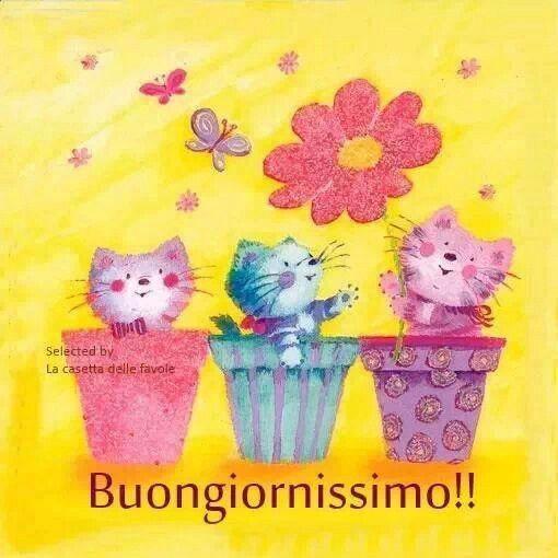 Buongiorno buona giornata illustration illustration for Buongiorno con gattini
