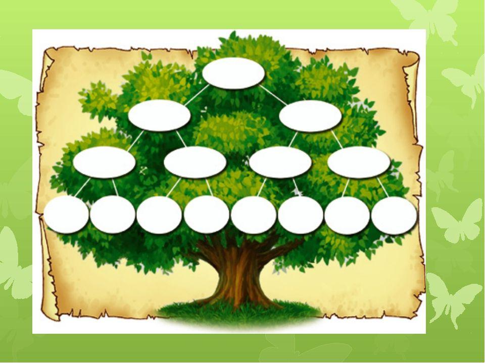 Картинки мое дерево семьи