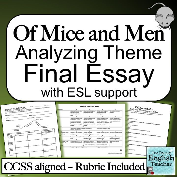 Of Mice and Men Analyzing Theme Essay Graphic organizers, Mice and