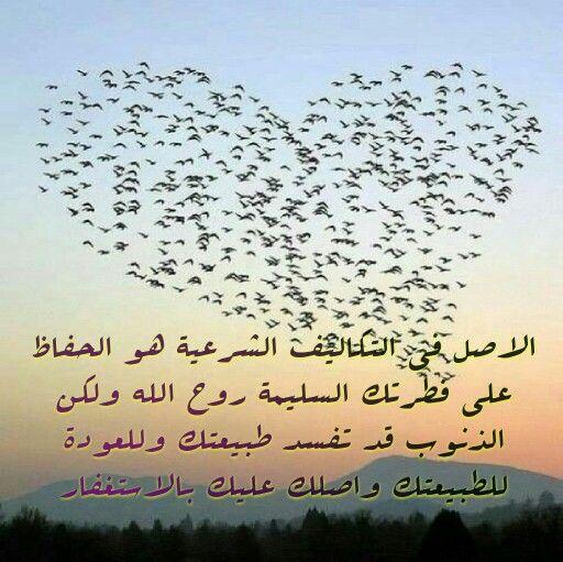 الشرع والفطرة Calligraphy Arabic Calligraphy Arabic