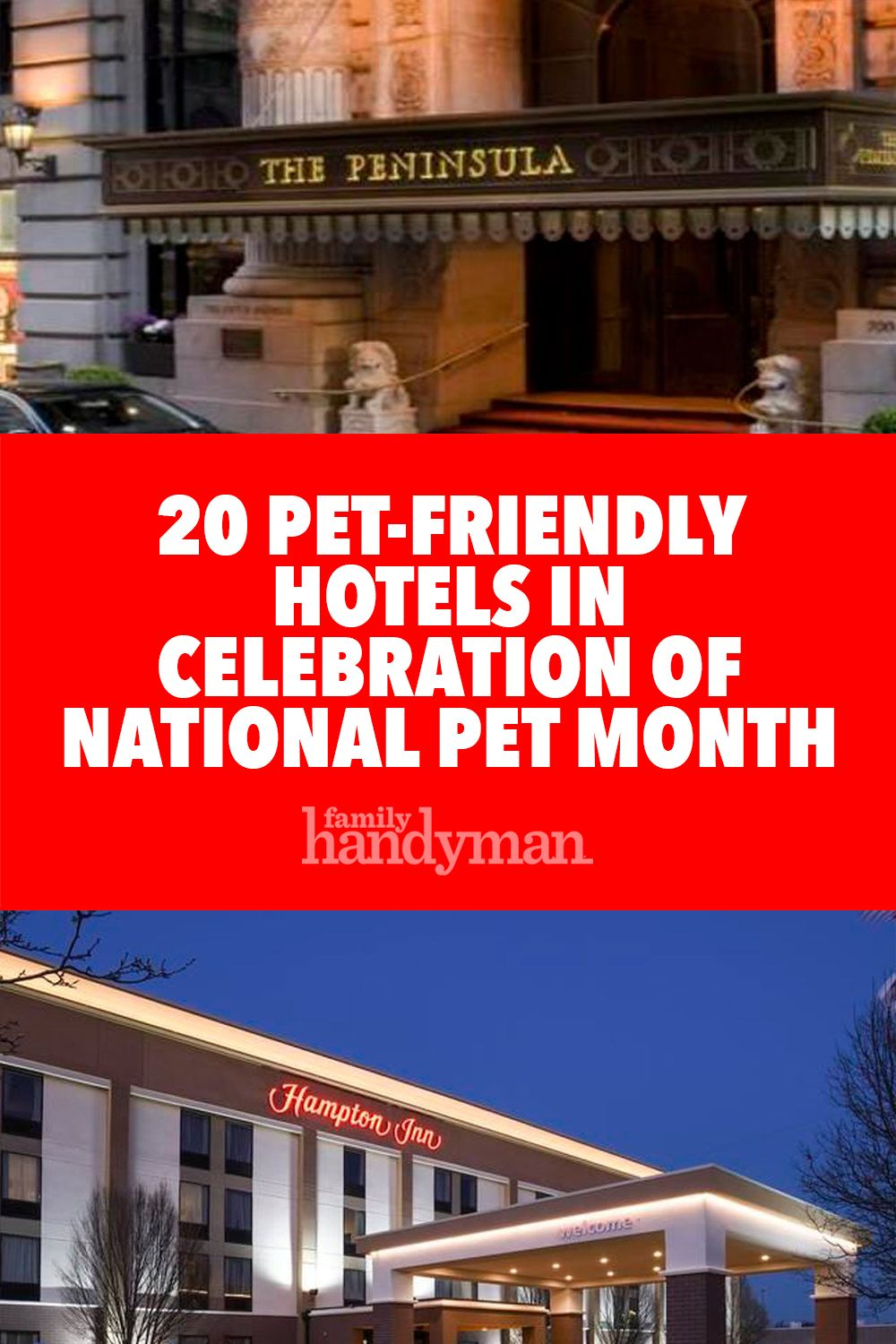 20 Pet Friendly Hotels In Celebration Of National Pet Month Pet