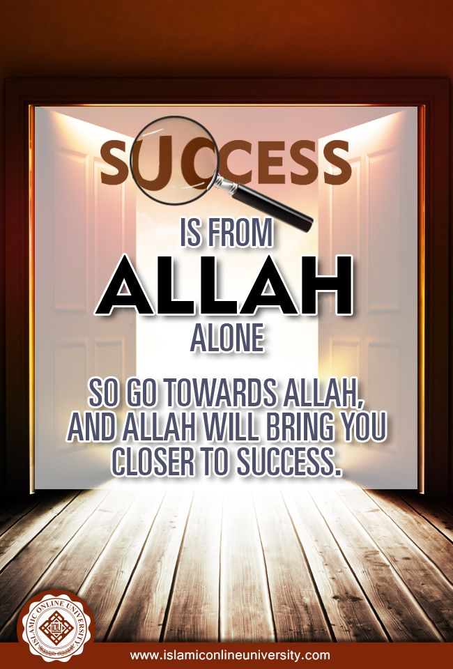 If you want guaranteed success, make every effort to please Allah.