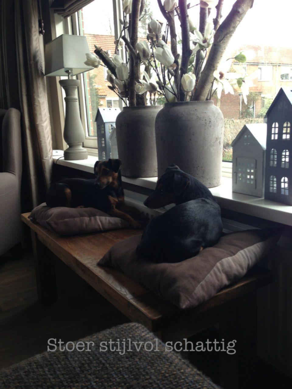 Pin van janny op vensterbank pinterest escaparates for Decoratie vensterbank woonkamer