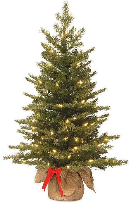 Nordic NATIONAL TREE CO National Tree Co. 3 Foot Spruce Pre-Lit Christmas  Tree #National#Tree#TREE - Nordic NATIONAL TREE CO National Tree Co. 3 Foot Spruce Pre-Lit