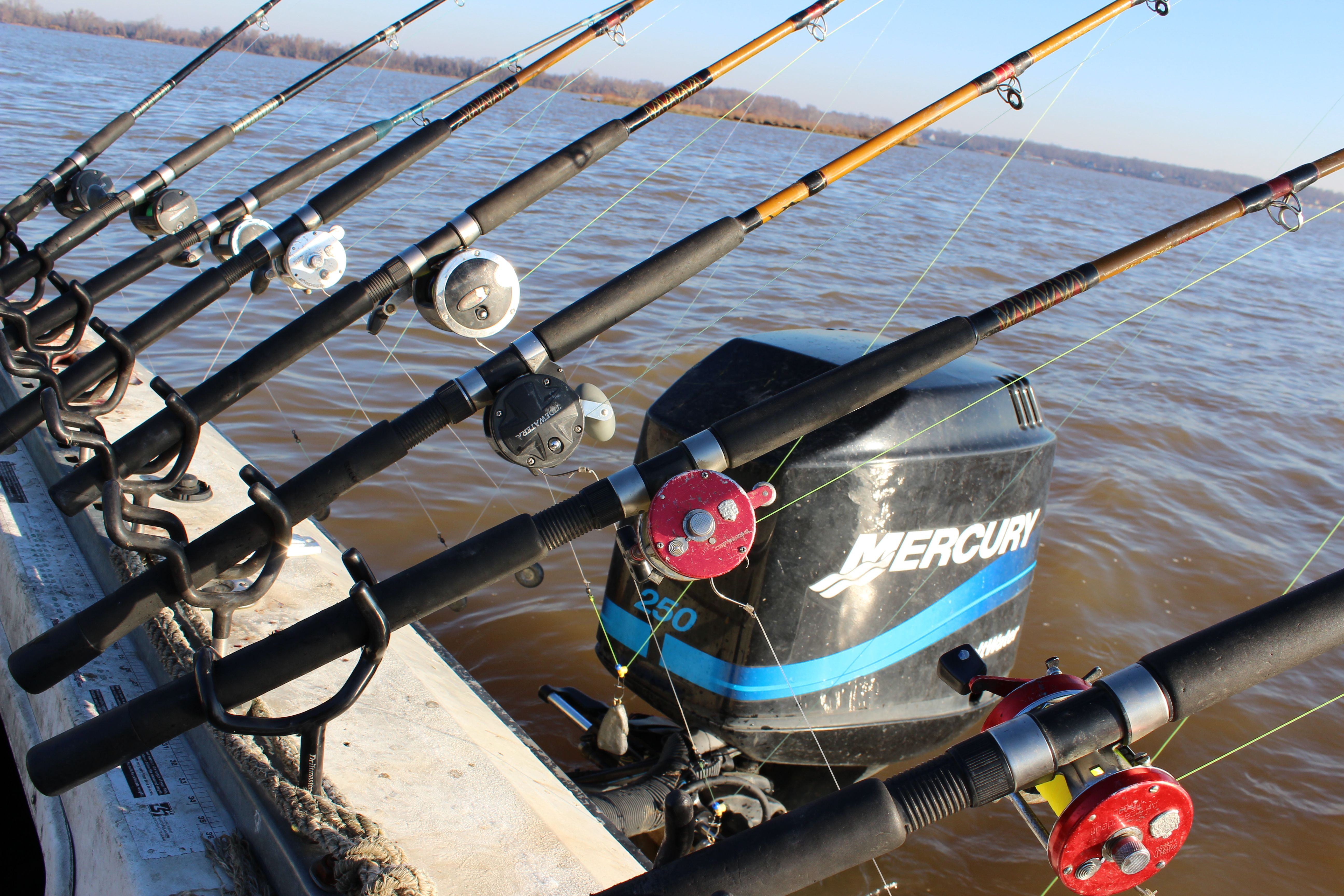 A true spread of trophy catfish rods and reels on the big for Cat fishing pole