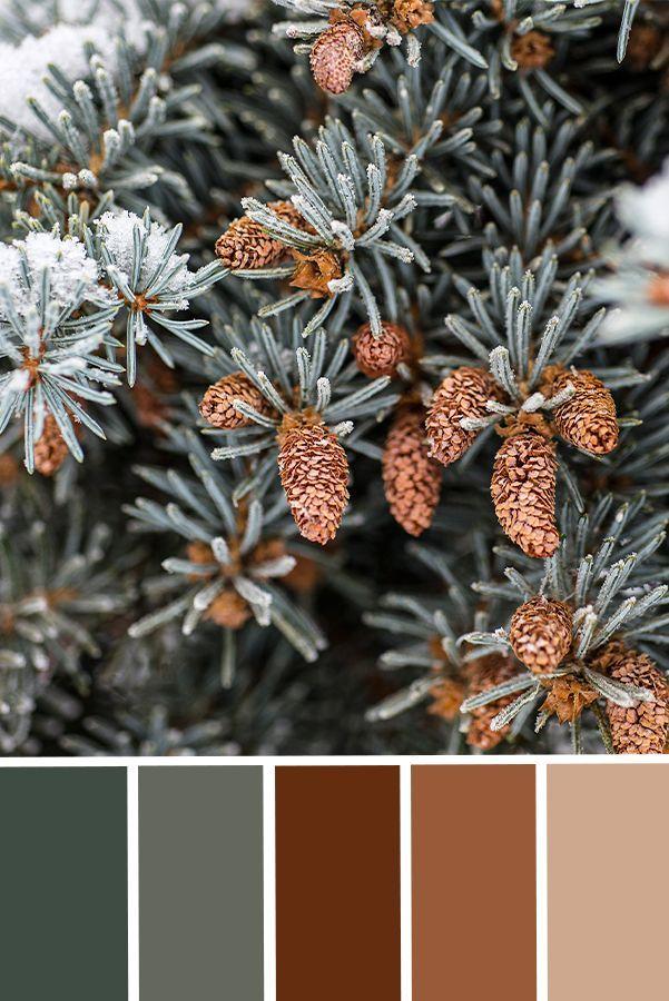 Forest Green Christmas Fir Tree Print, Color Palette Inspiration, Christmas Decor Printable Art