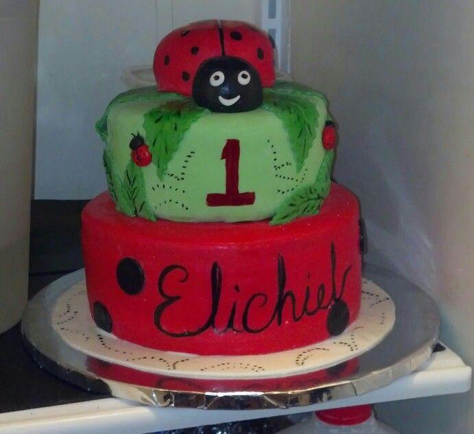 Ladybug fondant cake :)