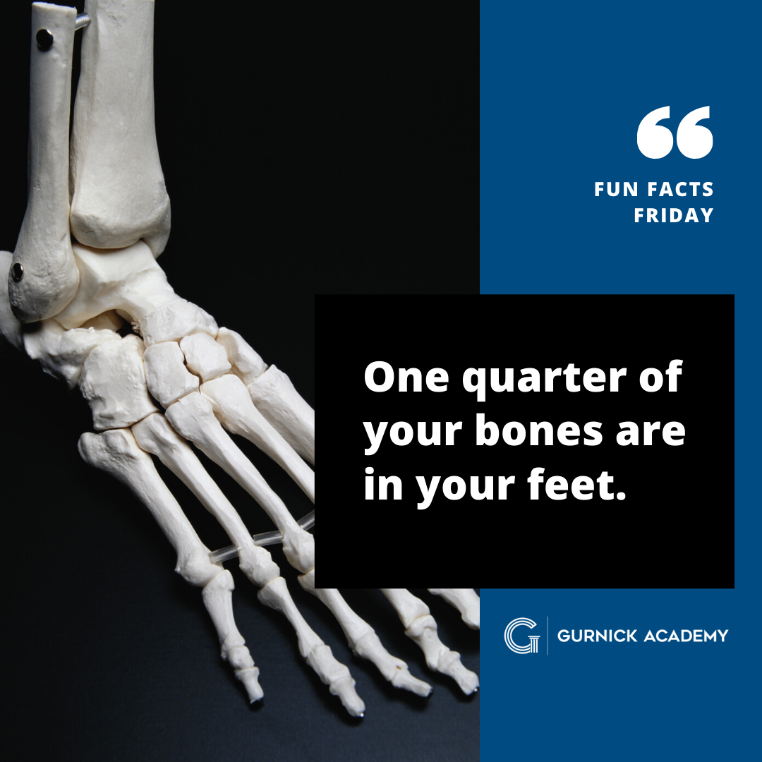 One Quarter Of Your Bones Are In Your Feet Fact Medical