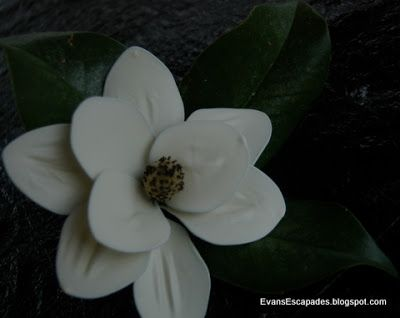 How To Make A Magnolia Blossom From Latex Balloons Supplies Needed