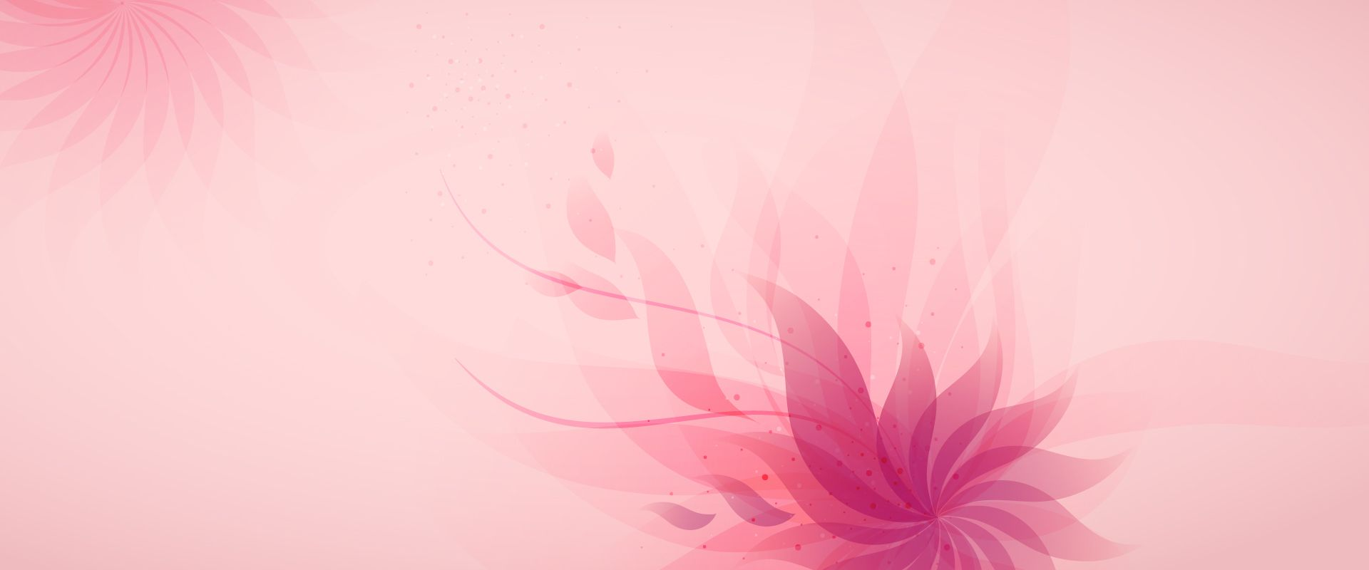 Abstract Pink Floral Background Pink Floral Background Abstract