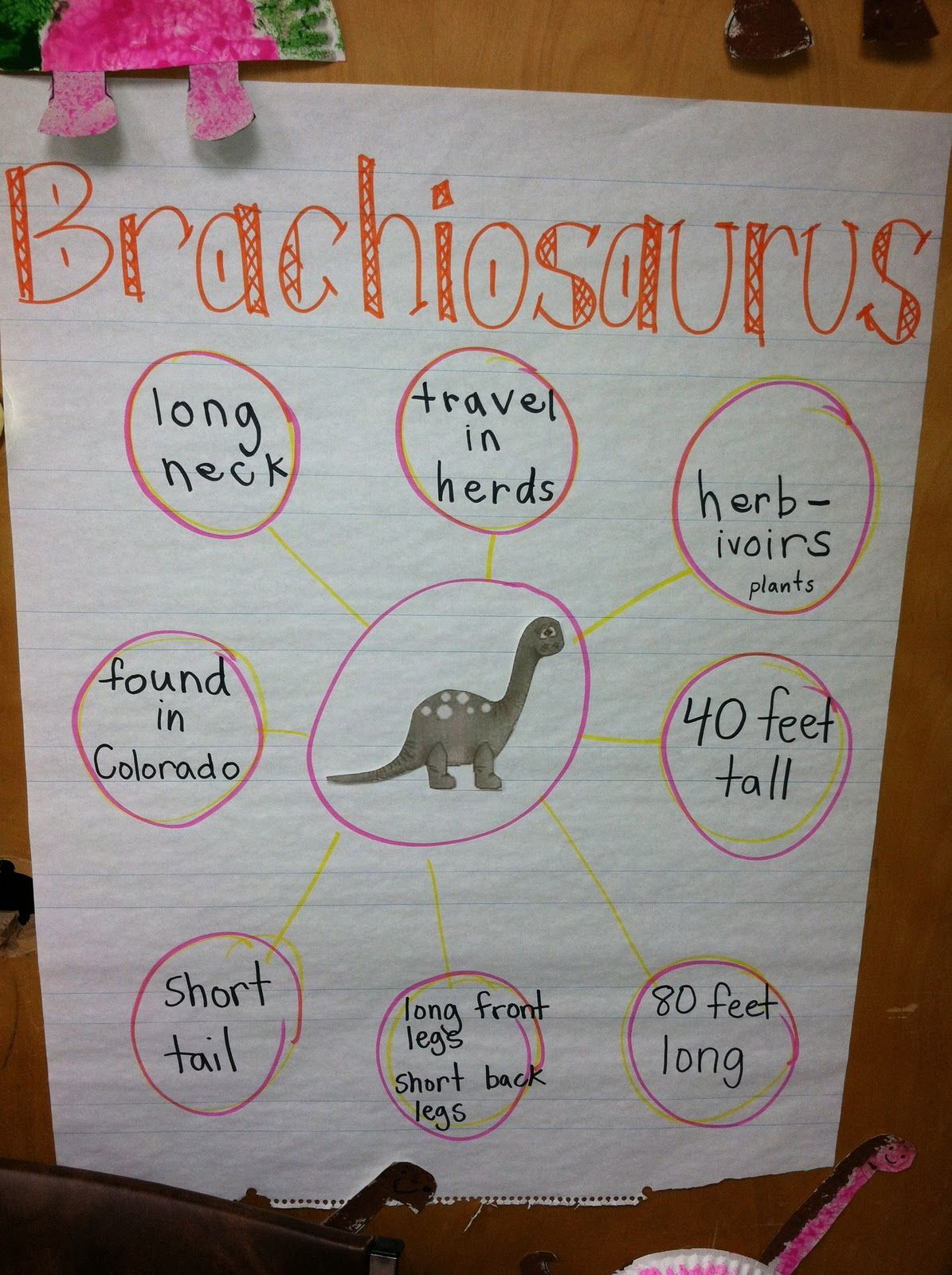 Ms. Solano's Kindergarten Class: Dinosaur ROAR! {week one}