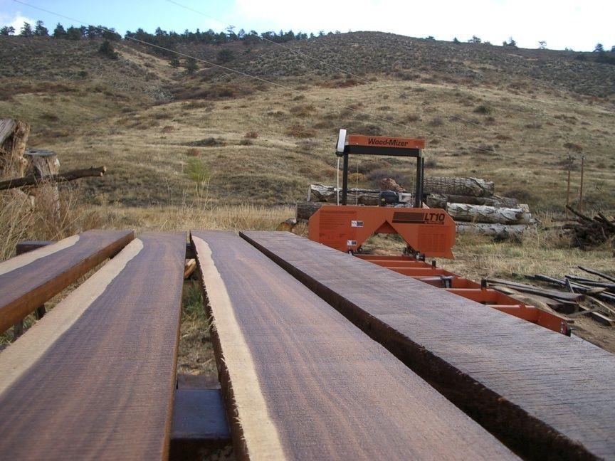 bandsaw sawmill and black walnut slabs