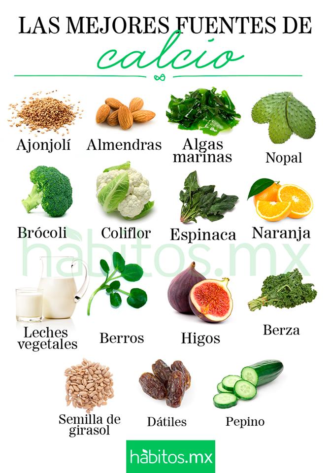 alimentos con calcio para embarazadas
